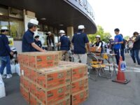 長岡市少年野球大会の開催